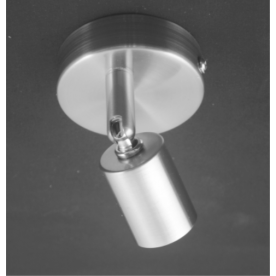 Austin 1 Light  - Satin Nickel