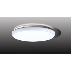 VEGA 250mm LED Flush Light - Natural White